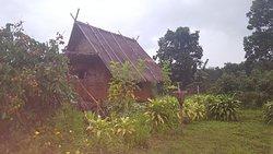 Baan 2 Dao Farmstay