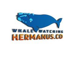 Observation des baleines Hermanus