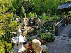 Siruwia - Ogród Japoński