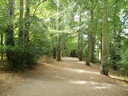 Balmore Walk