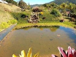 Jardim Botânico de Poços de Caldas