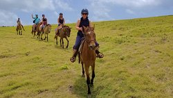 Atlantic Shores Riding Stables
