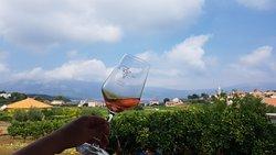 Popic Winery Lumbarda