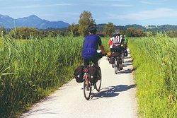 Do it in Tuscany - Tours & Services