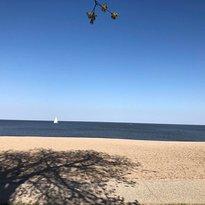 Gimli Beach