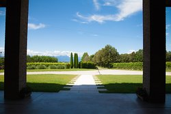 Winery Podere Selva Capuzza