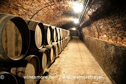 Traditional cellar in Neszmély wine region