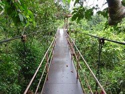 Thung Khai Botanical Garden