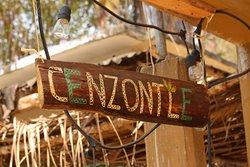Cenzontle Mazunte