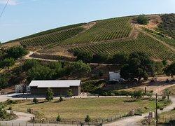 McPrice Myers Winery