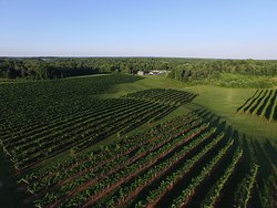 Stanburn Winery