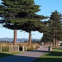 Oneroa cycleway/ walkway