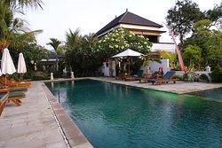 Kelapa Lovina Beach Villas and Restaurant