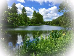 Cwmtillery Lakes