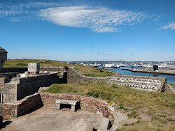 Torry Battery