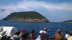 Riserva Naturale Statale Isola di Vivara
