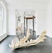 Galleria Sculptor