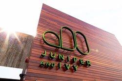 Juniper and Ivy