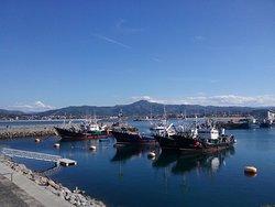 Puerto de Hondarribia