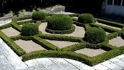 Jardin de topiaire