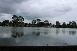 Lough wildlife sanctuary