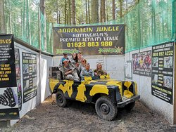 The Adrenalin Jungle