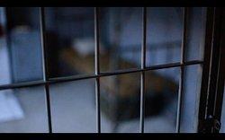 Zakład Karny / Prison Cell