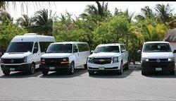 TaxiGo Transfers and Tours Riviera Maya