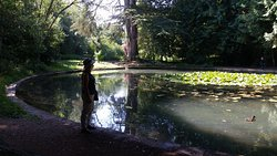 Wychwood Wild Park
