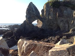 Australia rock looking for seals
