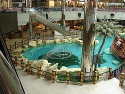 Rashed Mall
