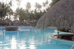 swim up bar in family area pool