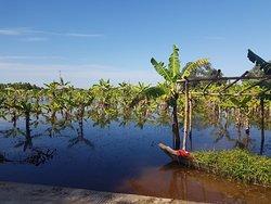 Koh Paen Island
