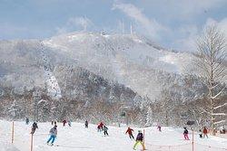 手稲山標高1023m パウダースノーを満喫できます!