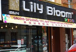 Lily Bloom Bakery