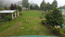 The main bungalow, lawns, my pooch and the pooches atET