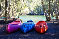 Jervis Bay Cabins & Camping