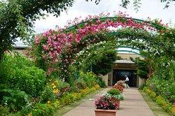 Garden Museum Hiei