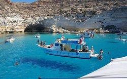Barca Flavia