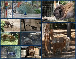 GarLyn Zoological Park