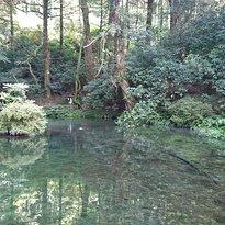 Ikeyama Springs