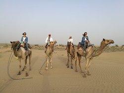 Adventure Travel Agency Camel Safari - Day Tours
