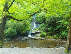 GSMNP - Deep Creek Trail