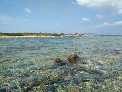 Punta Negra