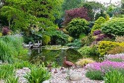 Ashwood Nurseries and John's Garden