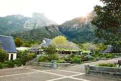 Kirstenbosch Tea Room Restaurant