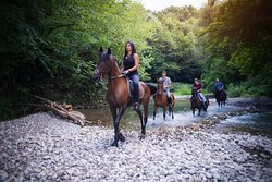 1st and 3rd Saturday of the month, enjoy horse riding, lunch and a half day wine tour.