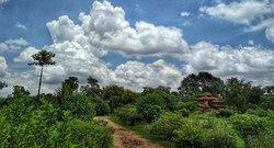 Rare Earth Farms & Homestay