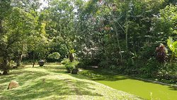 Perfect eco-friendly hideaway 15min from Galle