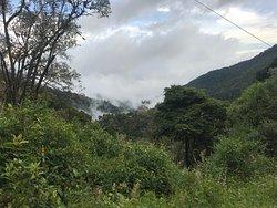 Uniek plekje in het Quetzal park